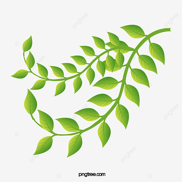 fashion fresh green leaves vector leaf material creative green rh pngtree com leaves vector free download leaves vector background