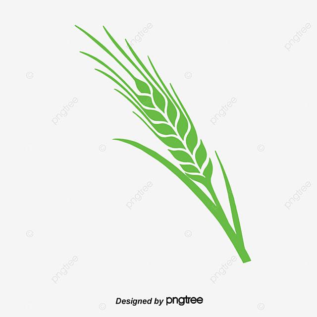 Food Creative Food, Food Food, Sugar, Flour PNG and Vector