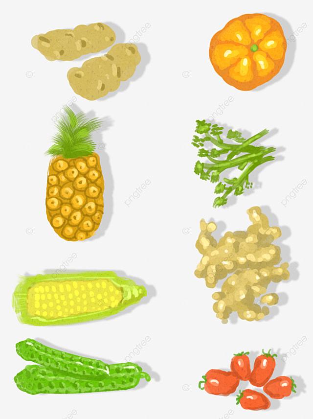 Livre Healthy Food