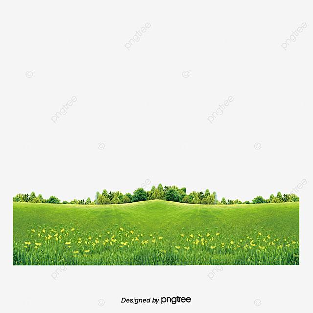 prairie prairies les fleurs les champs fichier png et psd