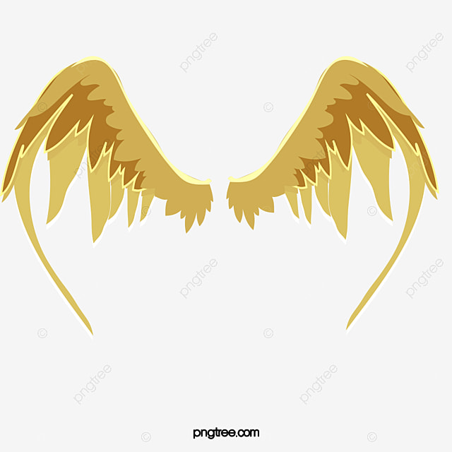 wing golden wings angel wings png image and clipart for