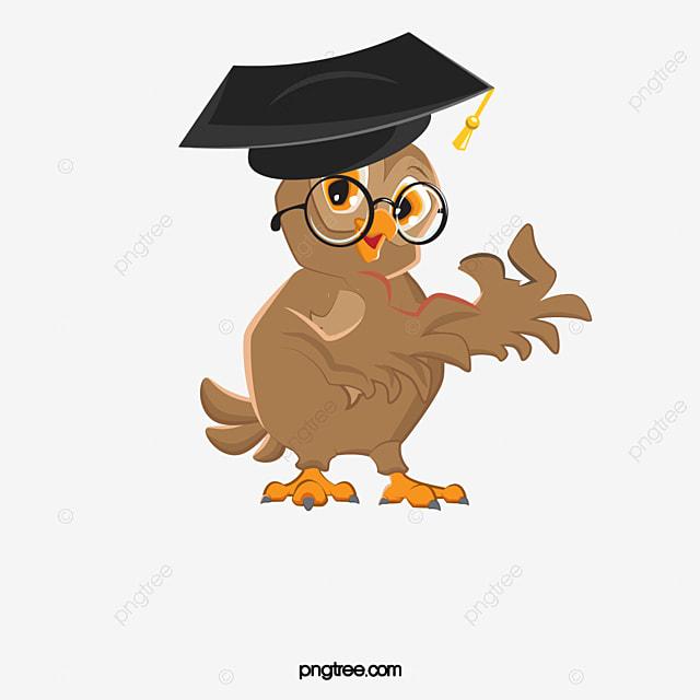 Owl Ojo Bachelor Cap Pintado A Mano De Buho Imagen Png Para Descarga