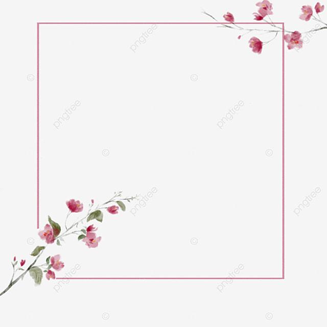 Flower Border, Frame, Flower Boxes PNG Image for Free Download
