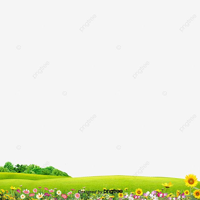 jardin de l herbe de l herbe prairies fleur fichier png et