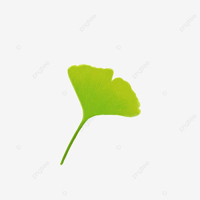 green leaf background ppt element ppt element ppt