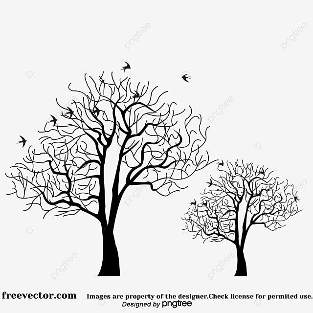 Tree, Arbol Seco, Ramas, Pine PNG y Vector para Descargar