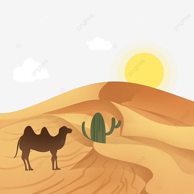 chameau le chameau de marche d u00e9sert chameau png et vecteur