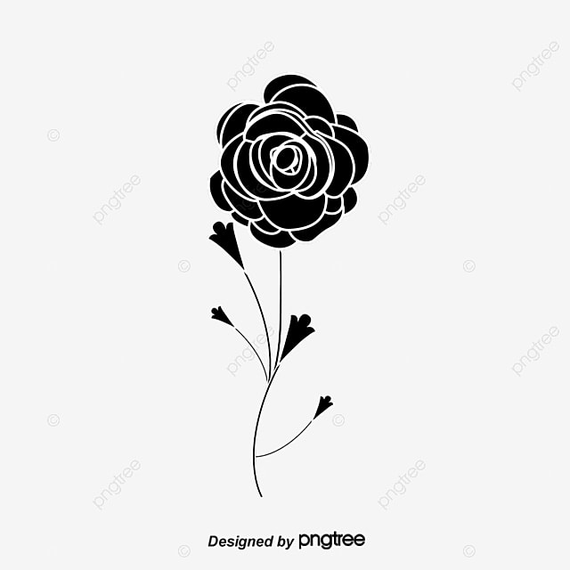 black and white pattern of roses black white roses png image and