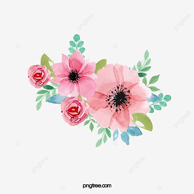 Watercolor Flowers Watercolor Clipart Hand Painted Bloom Png