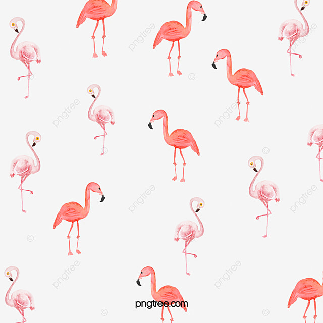 Flamingos drawing flamingos vector seamless background flamingos drawing flamingos vector seamless background watercolor pattern free png image pronofoot35fo Images