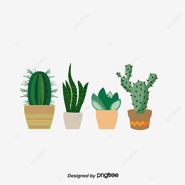 dibujos de plantas, cactus, suculentas, en maceta archivo png y