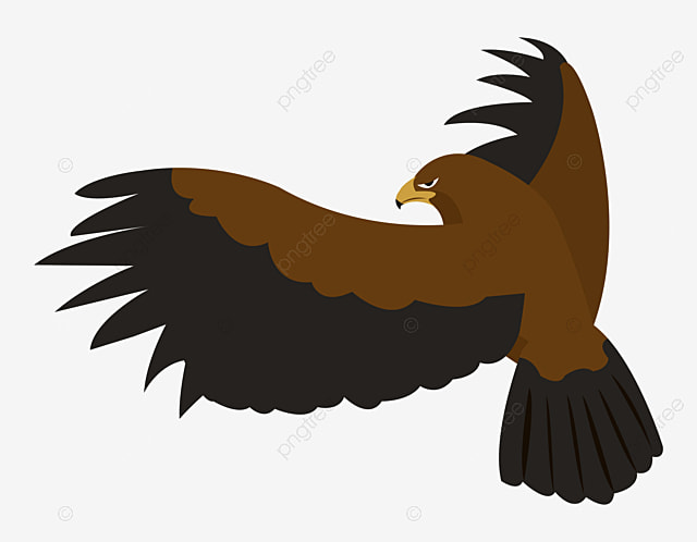 eagle vector eagle asuka animal world png and vector for free rh pngtree com eagle vector graphics eagle vector free