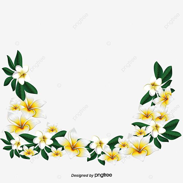 Tarjeta Vector De Flores De Fondo Verde Flores Fondo De Tarjeta Png