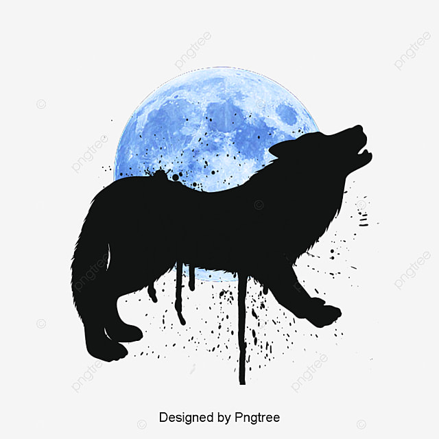 Wolf Png Vectors Psd And Clipart For Free Download Pngtree