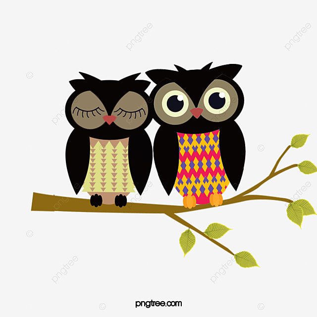 cute owl  cartoon  branches  owl png and vector for free Colorful Cartoon Owls Owl School Clip Art