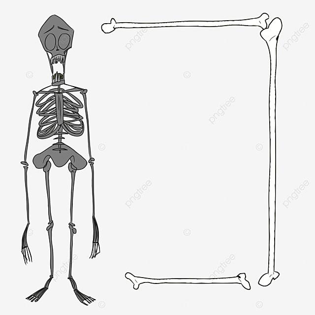 squelettes main squelette dessin de squelette noir et blanc de squelette image png pour le