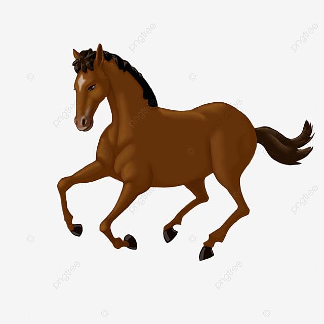 cheval dessin de cheval chevaux cheval png et vecteur pour