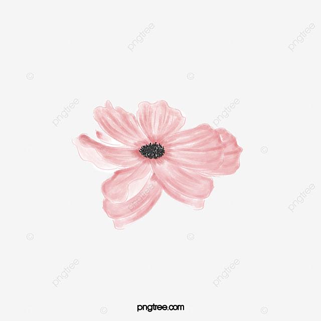 Beautiful Pink Flowers In Full Bloom Flowers Plant Watercolor