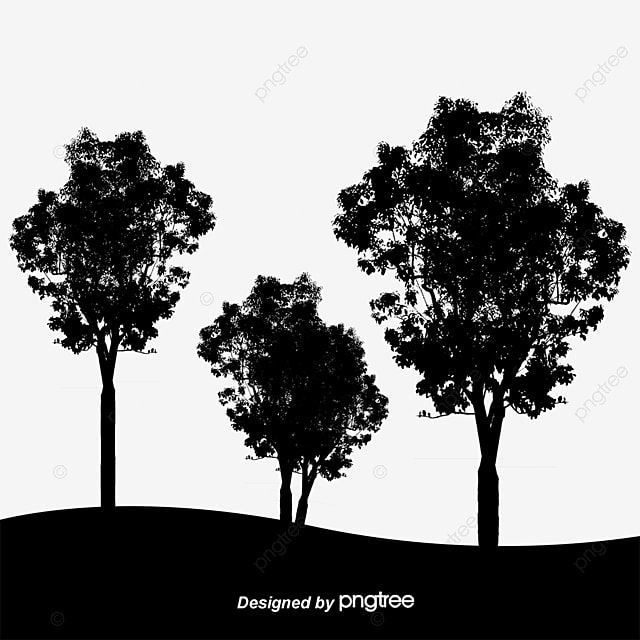 Birds Vector Woods Forest Black And White Trees Png Transparent Clipart Image And Psd File For Free Download