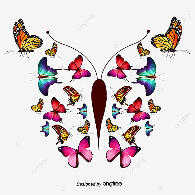 pink butterflyvector pink butterfly vector png and