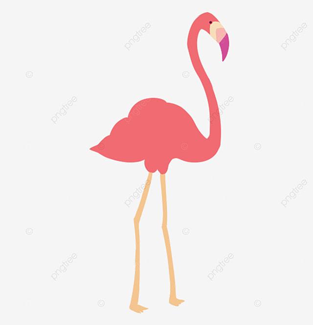 O Flamingo Está Em Extinção Flamingo, Flamingo, An...