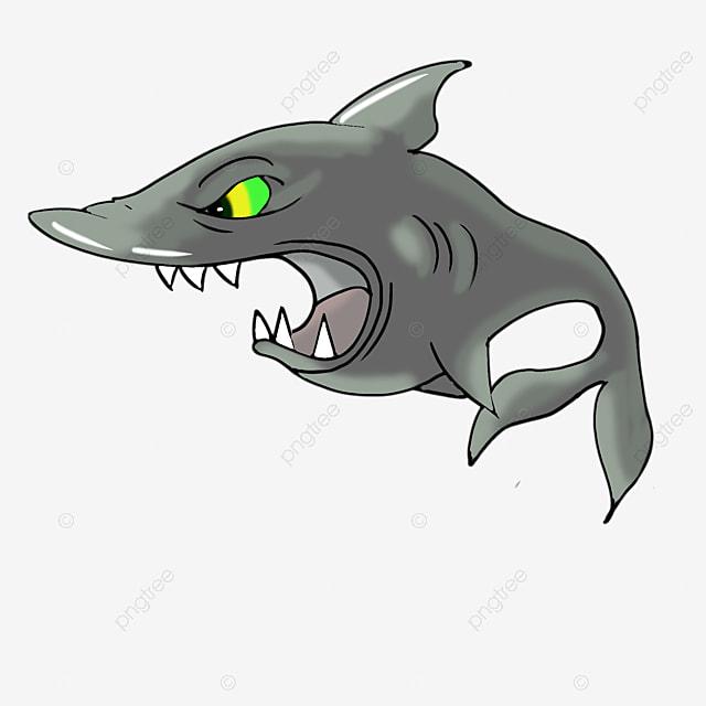 Pequeno Tiburon Shark Lindo Baby Shark Imagen Png Para Descarga Gratuita