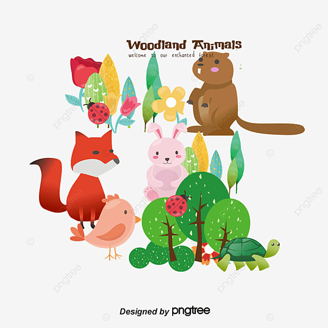 Animal Color Collection, Cartoon Comics, Animal Illustration ...
