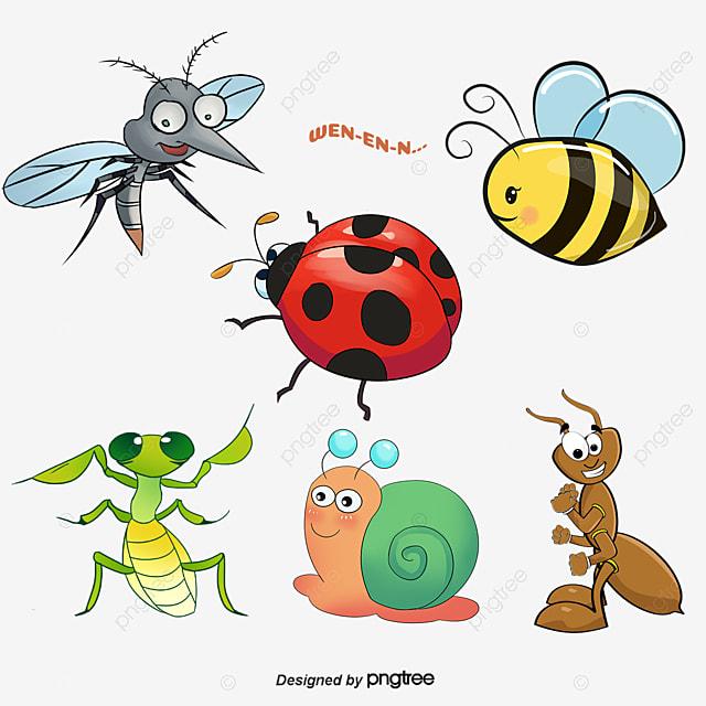 Resumen de dibujos animados de insectos dibujos animados - Insectos en casa fotos ...