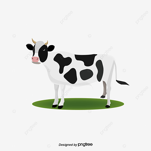 vector de vacas vaca lechera cartoon vaca animal png y
