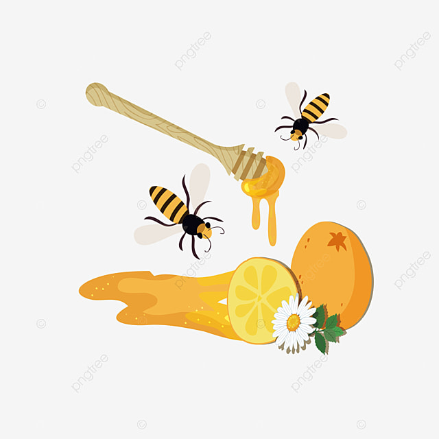 honey, Honeycomb, Fresh Honey, Food PNG Image