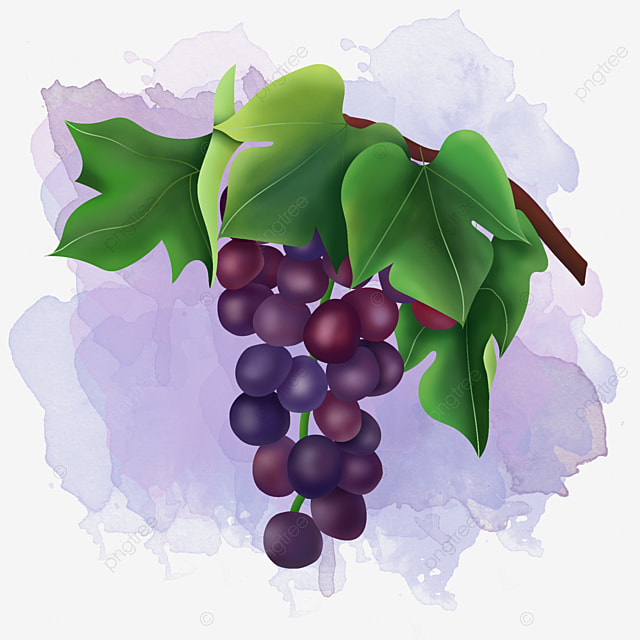 delicious raisins grape raisin png image and clipart for. Black Bedroom Furniture Sets. Home Design Ideas
