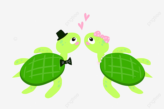 Sea Turtle Sea Clipart Turtle Clipart Tortoise Png Image And