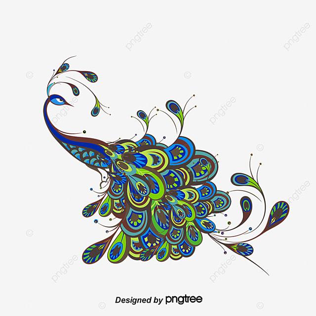 Vector De Dibujos Animados Pavo Real Naranja Animales De Dibujos