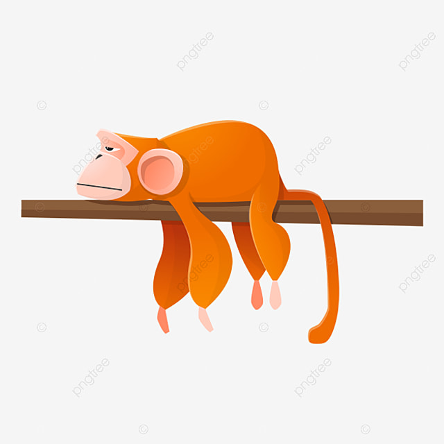 Monkey Hanging In A Tree Clipart Barefoot PNG Image And