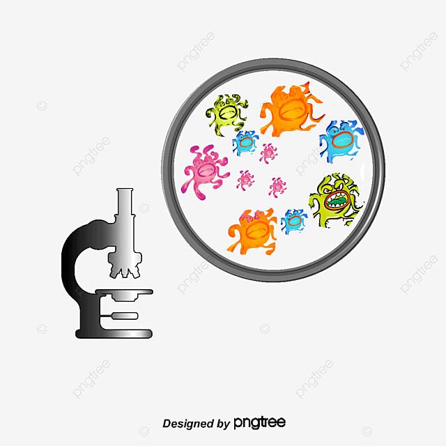 Resultado de imagen de bacterias*.png