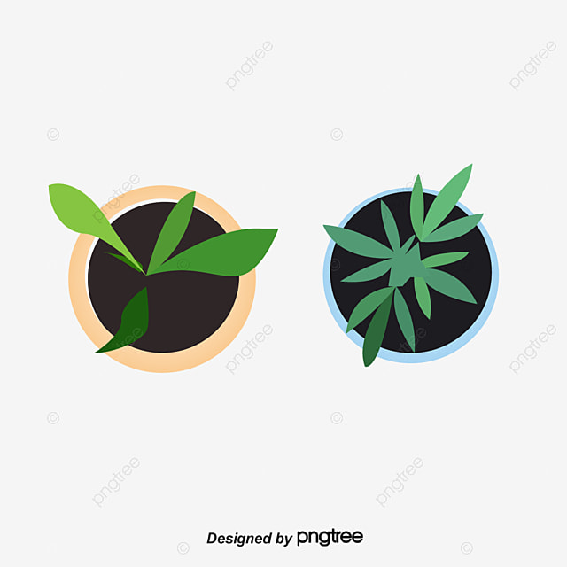 A Plan View Of Potted Plants Plant Potted Greenery Png