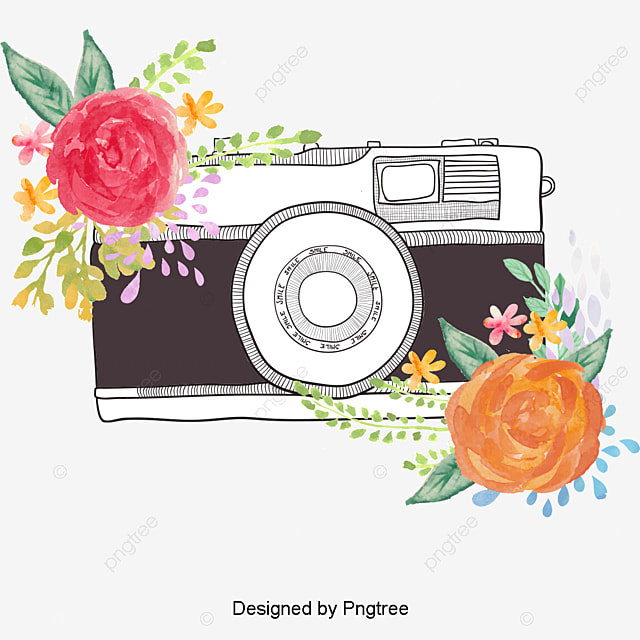 Watercolor Flowers Png Vector Psd And Clipart With: Vector Camera, Camera Clipart, Watercolor, Camera PNG