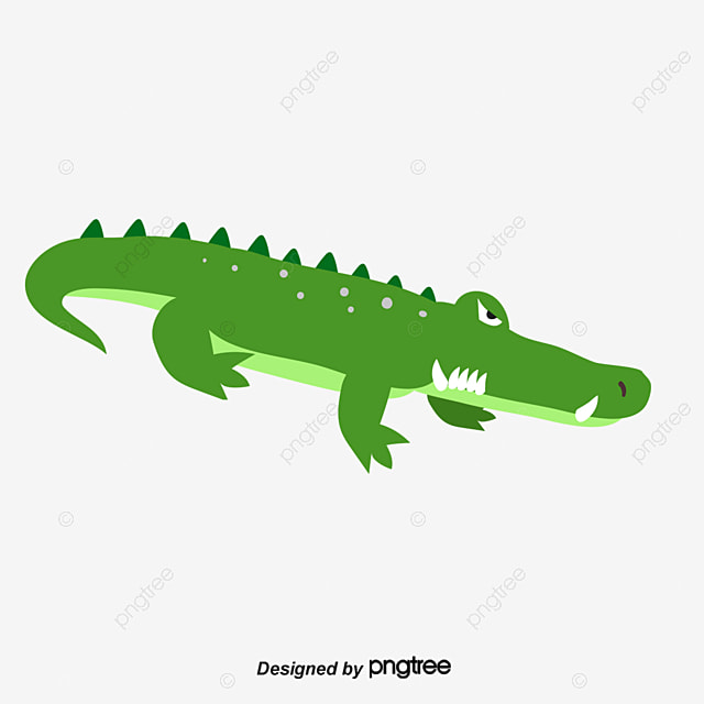 Png - Image crocodile dessin ...