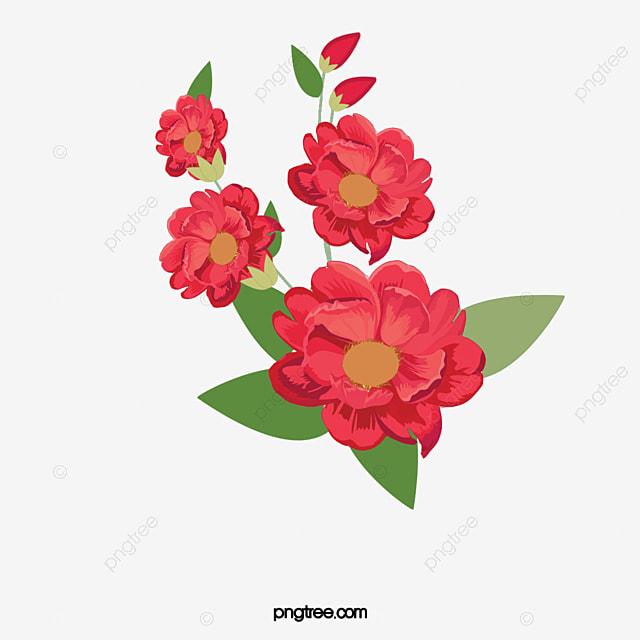 Flores Rojas En Plena Floracion Pintado A Mano Acuarela Flores