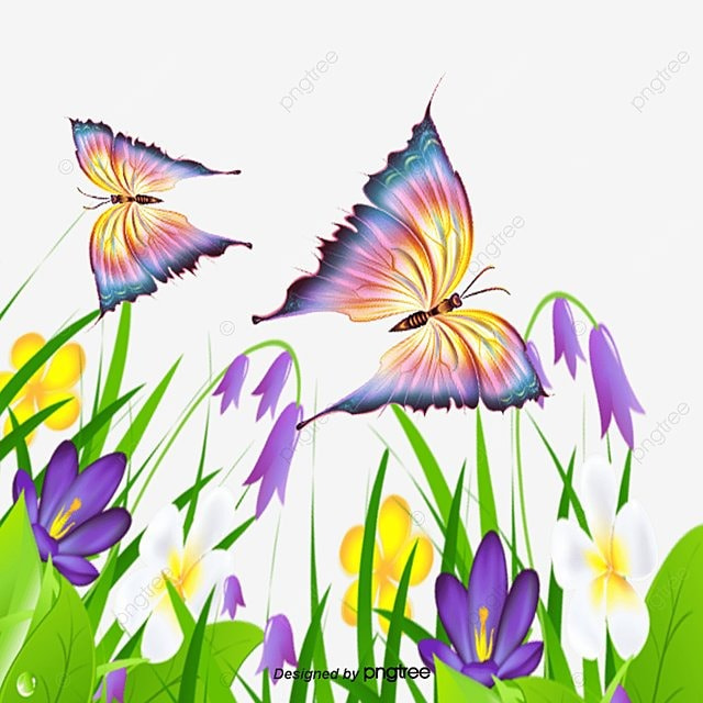 vector colored flowers and butterflies butterfly color flowers free png and vector