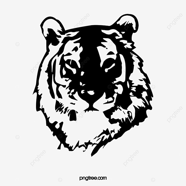 Painting Tiger Head Tiger Clipart Head Clipart Steller Image