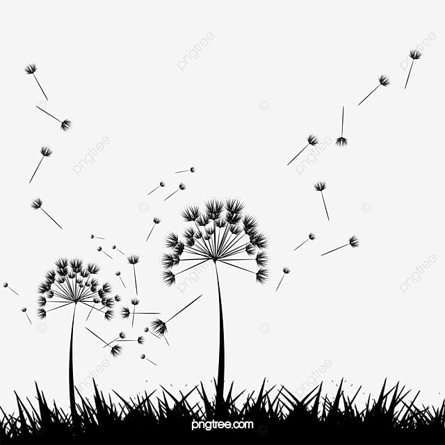 vector hand painted dandelion pintado a mano de diente de le n diente de leon dibujos. Black Bedroom Furniture Sets. Home Design Ideas