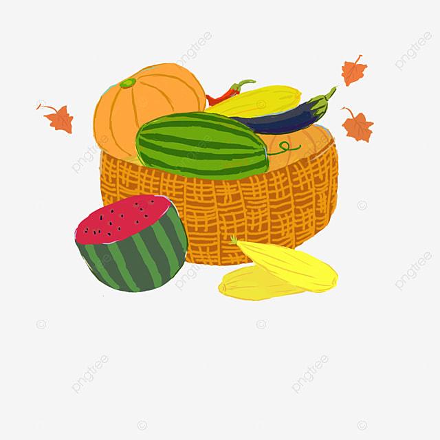 Vector Fruit Basket, Fruit Vector, Hd, Vector PNG And
