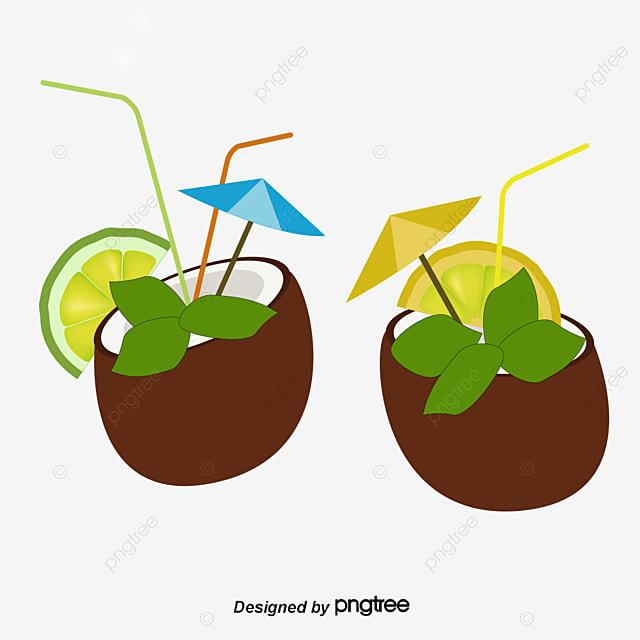 vector coconut and flowers coconut flowers cartoon