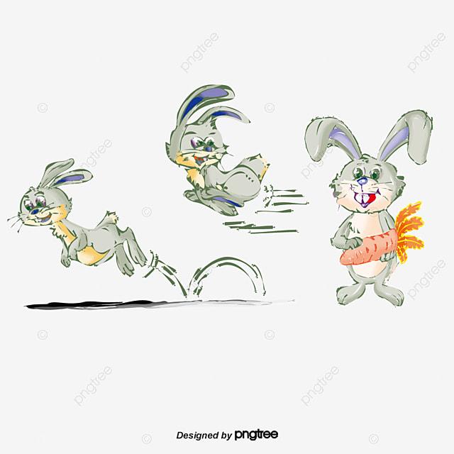 Vector Conejo Conejo Vector Zanahoria PNG y Vector para Descargar Gratis
