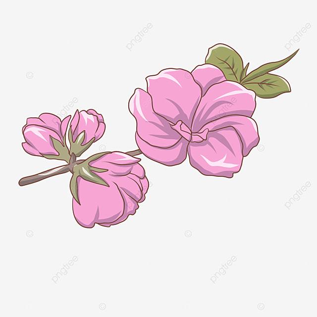 Fondos De Pantalla De Fondo Decorativo De Hermosas Flores