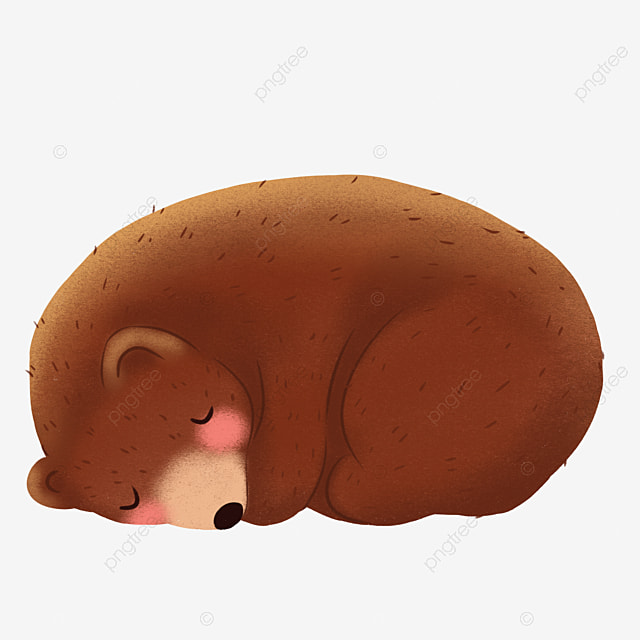 sleeping bear bear go to bed sleep png image and clipart for free rh pngtree com Sleeping Bear in Cave Clip Art sleeping polar bear clipart
