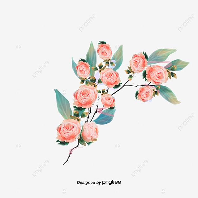 La Republique De Coree Des Fleurs Blanches Realiste De Dessin Des
