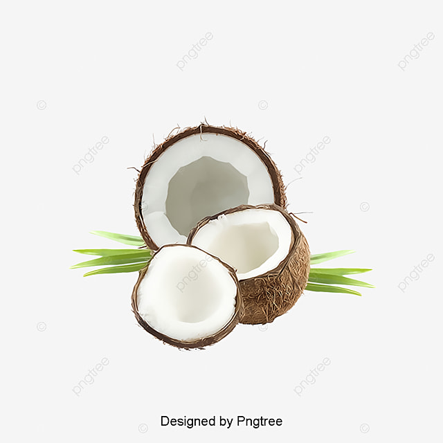 coconut coconut clipart coconut milk png image and clipart for