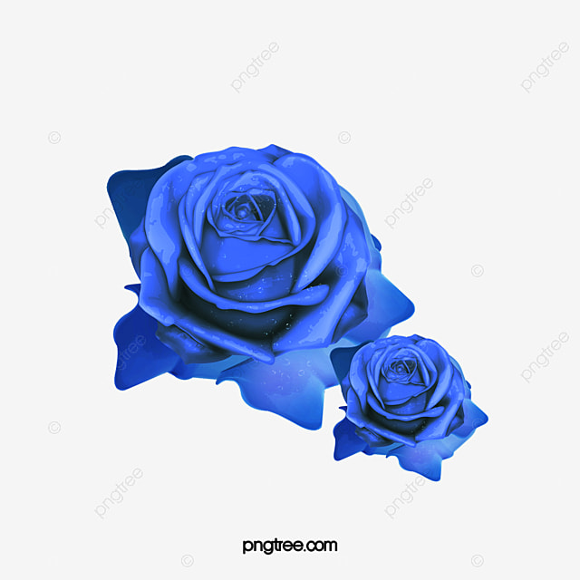 Blue Rose Rose Clipart Blue Roses Blue Png Image And Clipart For